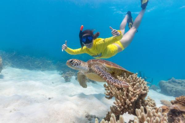 Ocean Safari 12